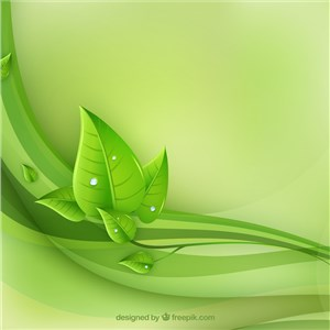 Green Leaf Renovations, LLC Cover Photo