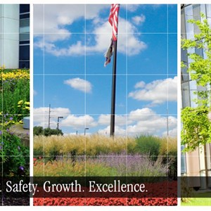 Red Cedar Tree Service Cover Photo
