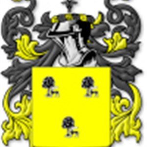 Oriens Sylva LLC Logo