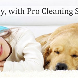 Pro Cleaning Solutions Logo