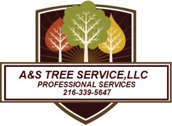 A&S TREE SERVICE,LLC Logo