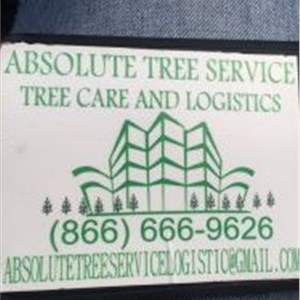 Absolute Tree service Logo