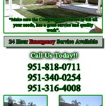 Ortega Tree Service and Lawn Maintenance Cover Photo