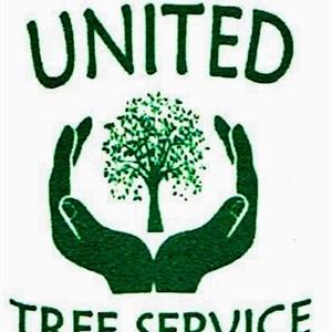 United Tree Service Logo