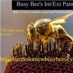 Busy Bees Custom Interior/exterior Painting Cover Photo