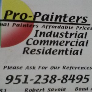 Pro Painters Cover Photo