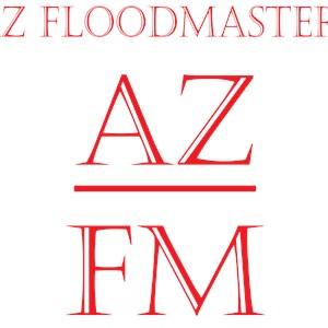 AZ Floodmasters Logo