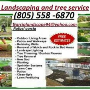 How Much Does Lawn Service Cost