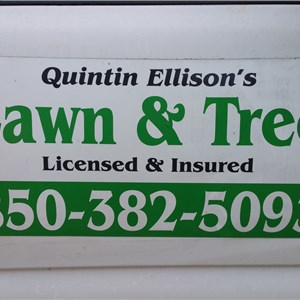 Quintin Ellisons Lawn & Tree Logo