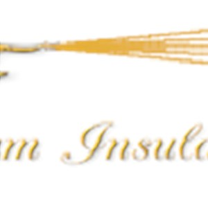 Weather Foam Insulation Logo