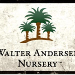 Walter Andersen Nursery Cover Photo