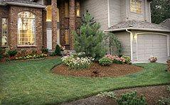 Tinhs lawn care Logo