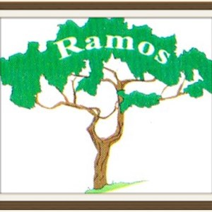 Ramos Tree Concrete And Fence Service Logo