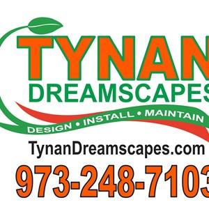 Tynan Dreamscapes Cover Photo
