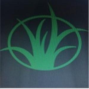 ROBLES LAWN CARE Logo