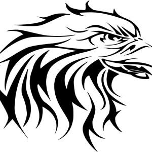 Hawk-scapes Cover Photo