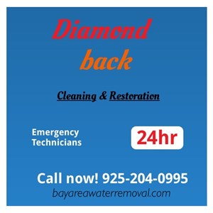 Diamondback Cleaning & Restoration Logo