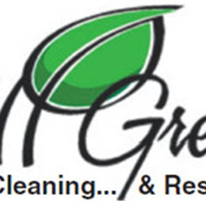 Express Steamway Carpet Cleaning Logo
