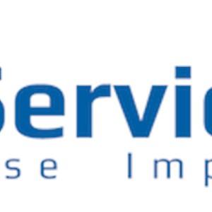 E-services LLC Logo