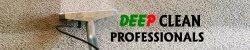 Deep Clean Professionals, LLC Logo