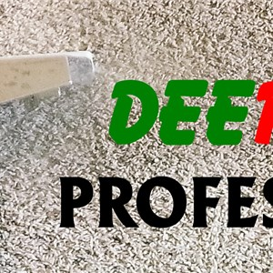 Deep Clean Professionals, LLC Logo