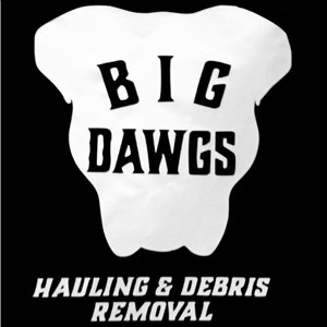 Big Dawgs Hauling & Debris Removal Cover Photo