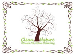 Clean Nature Logo