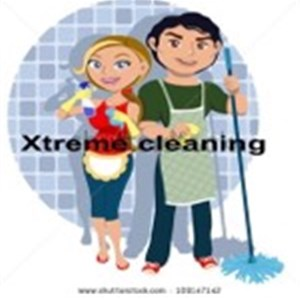 Professional Cleaning Service Logo