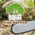 Tree Removal Cost Estimate