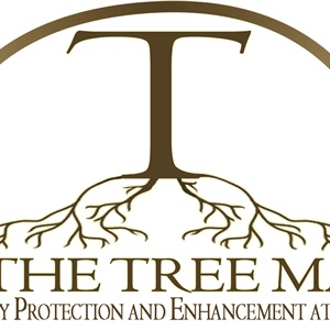 T. The Tree Man Cover Photo