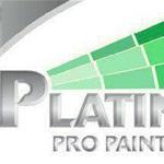 Platinum Pro Painting Cover Photo
