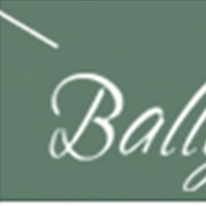 Ballymore Homes Llc Cover Photo