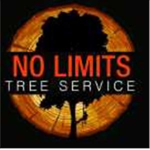 N Limits Tree Service LLC Cover Photo