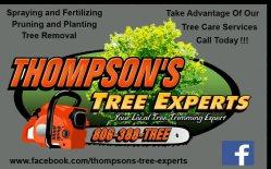 Thompsons Landscape & Tree Experts Logo