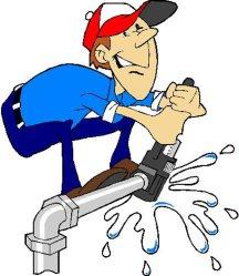 Plumber Peters Professional Plumbing Logo