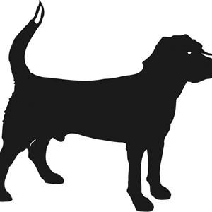 Black Dog Pressure Washing Logo