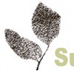 Superior Spray Solutions LLC Logo