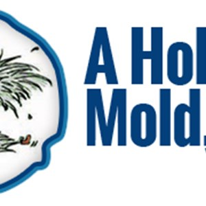 A Hold on Mold LLC Cover Photo