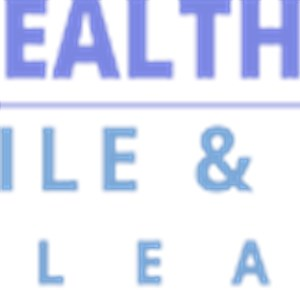 Healthy Home Tile/carpet Cleaning Logo