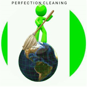 Perfection Cleaning Cover Photo