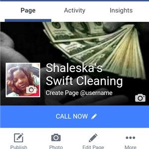 Shaleskas Swift Cleaning Logo