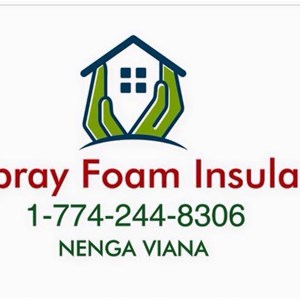 Eco Spray Foam Insulation inc Logo