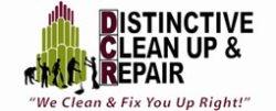 Distinctive Construction Clean Logo