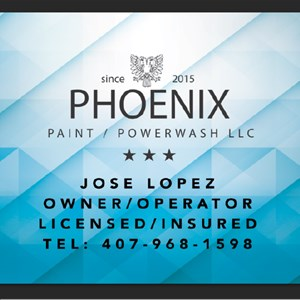 Phoenix painting and powerwash Logo