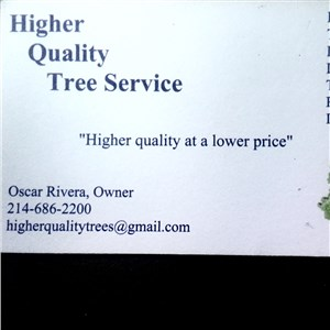 Higher Quality Tree Services Logo
