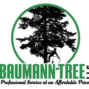 Baumann Tree LLC Cover Photo