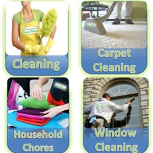 Domestic Cleaners