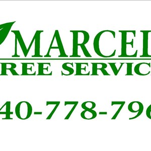 Marcell Landscaping And Tree Service LLC Logo