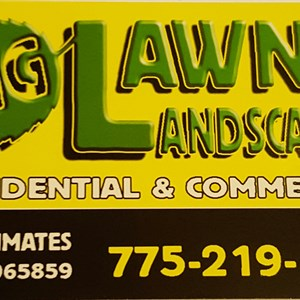 I M G Lawn And Landscaping Logo