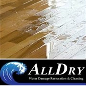 All Dry Restoration Cover Photo